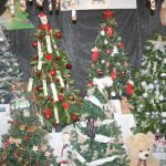 A group shot of the donated trees at the Francis House Festival of Christmas Trees